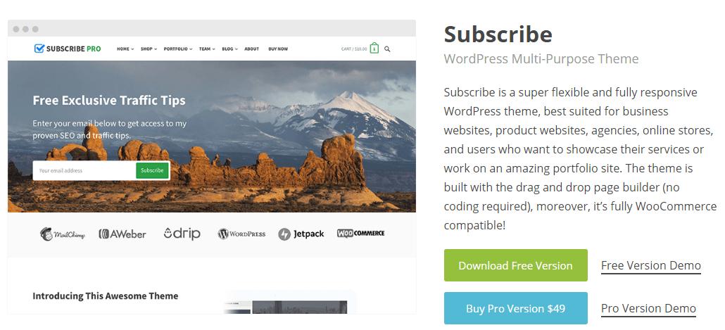 Subscribe Pro WordPress theme