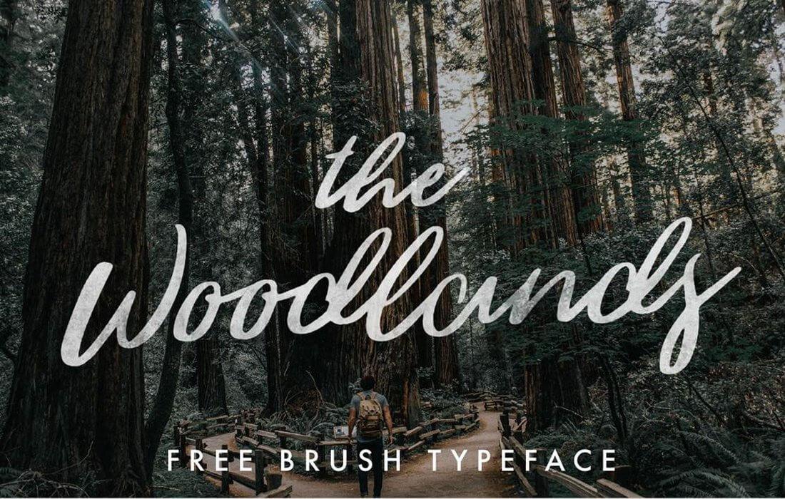 Woodlands Free ScriptFont
